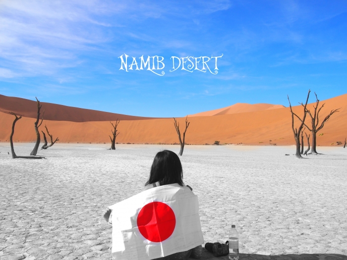 ナミブ砂漠文字入れ
