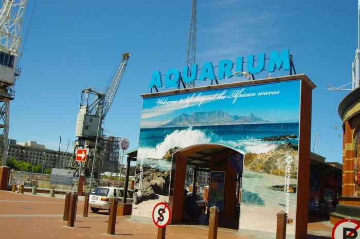 ツーオーシャンズ水族館 (1)