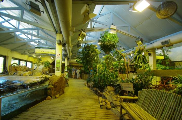 ツーオーシャンズ水族館 (71)