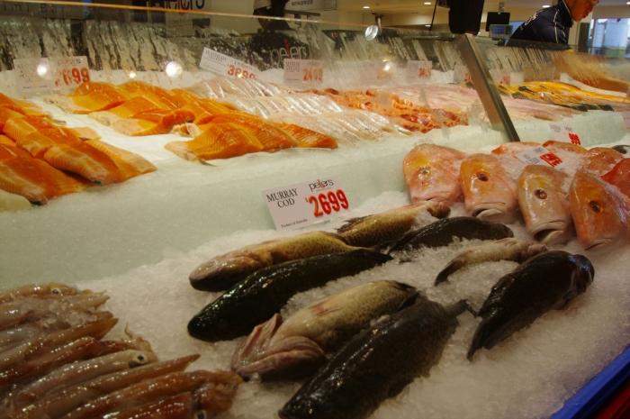 シドニーフィッシュマーケット (3)