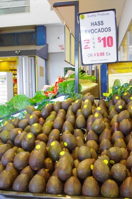 シドニーフィッシュマーケット (11)