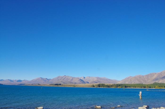 テカポ湖 (24)