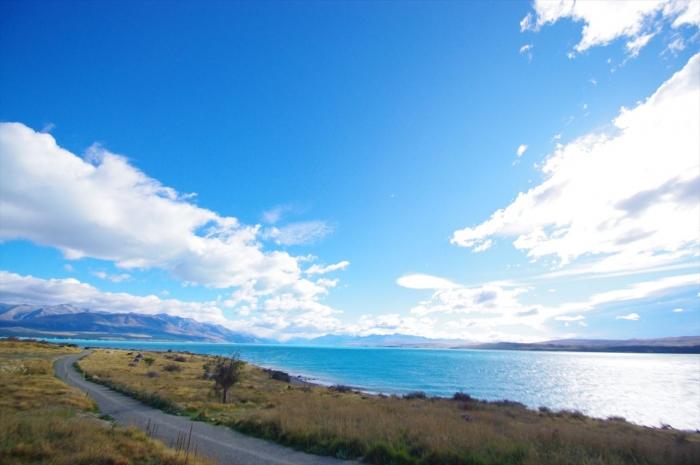 プカキ湖 (3)