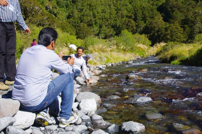 NZの美味しい水 (15)