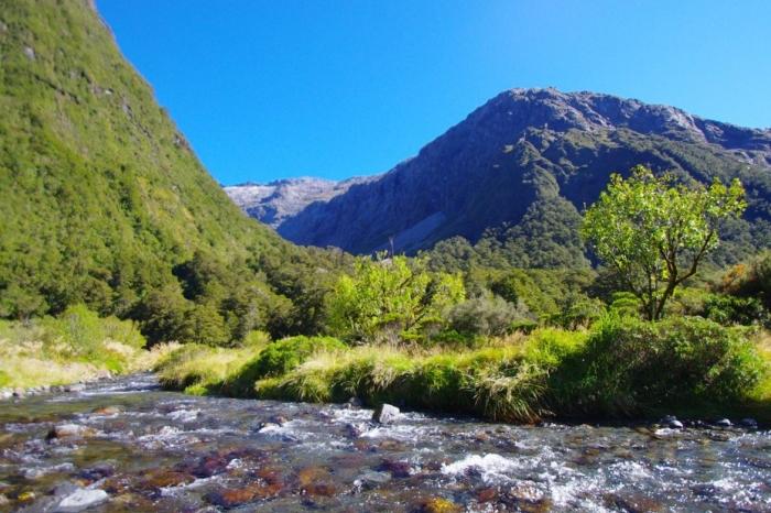 NZの美味しい水 (22)