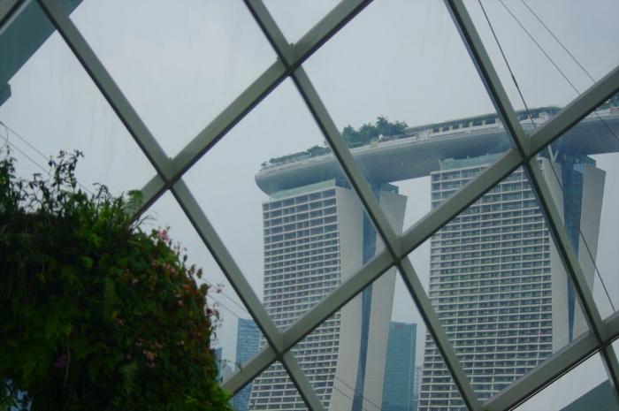 シンガポール植物園 (24)