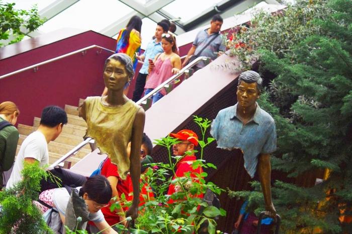 シンガポール植物園 (52)