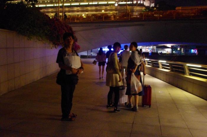 シンガポール夜景 (9)