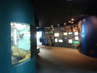 下関市立しものせき水族館 海響館