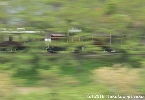 DSC_2264a1_01.jpg
