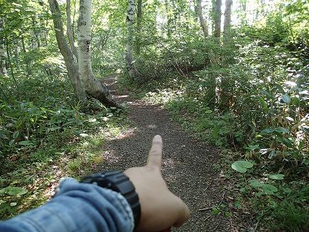 登山道を行く
