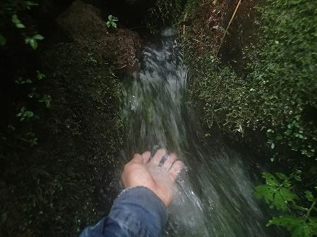 お水も旨し