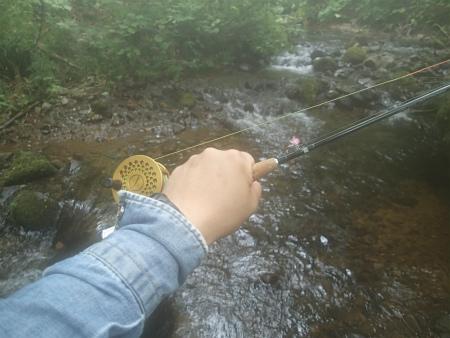 釣りにしましょw