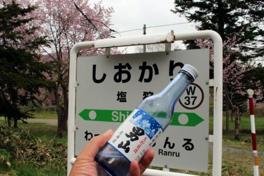 ⑬男山 (530x353)