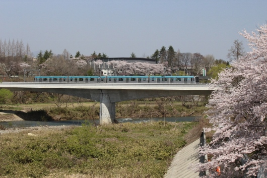 ⑭広瀬川を渡る (530x353)
