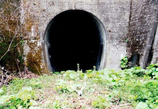 ⑭鍛高トンネル
