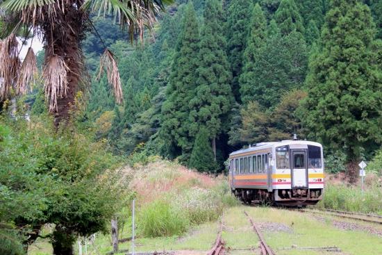 ②智頭行列車