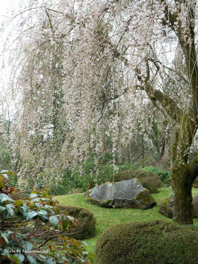 小涌園庭園