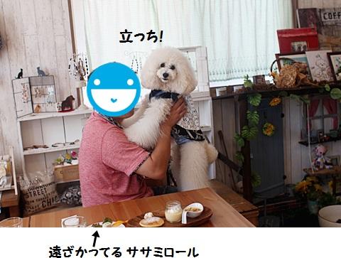 IMG_5328.jpg