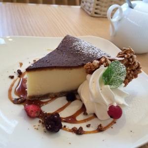 201603 komae チーズケーキ