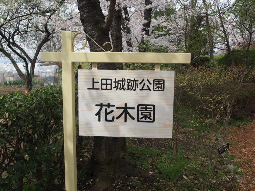 20160410・妙高1-26