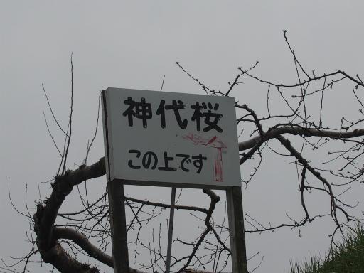 20160410・妙高2-02