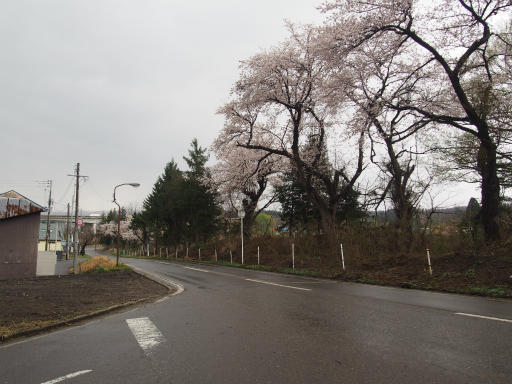 20160411・妙高6-18
