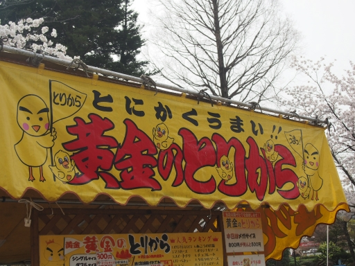 20160410・妙高ネオン04・上田城