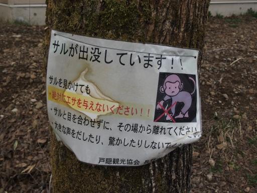 20160410・妙高ネオン09