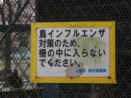 20160411・妙高ネオン24