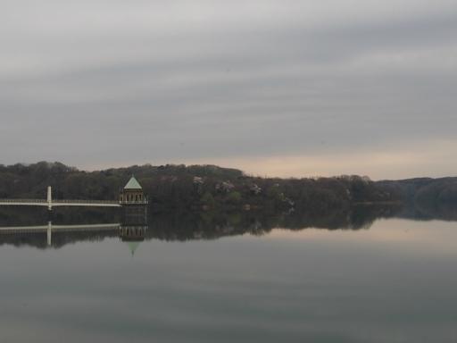 20160402・狭山湖2