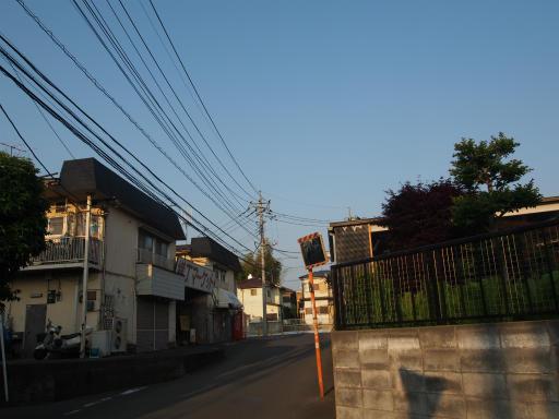 20160521・早朝散歩18