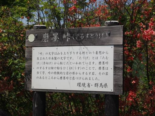 20160529・群馬ツツジ旅3-06・大