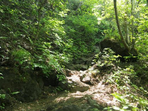 20160529・群馬ツツジ旅4-05・上の岩への道はさらに険しい