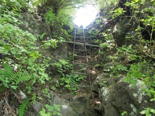 20160529・群馬ツツジ旅4-06・最後にはしごを登ります