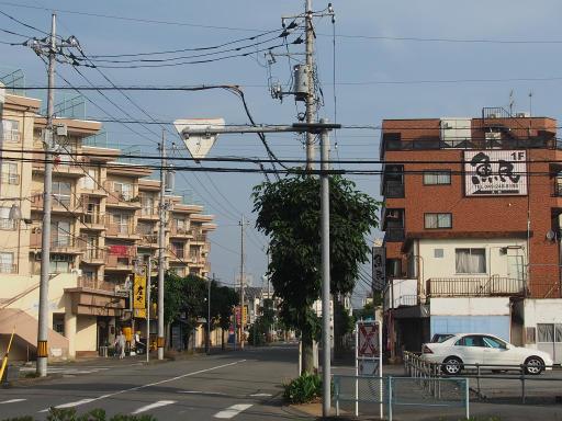20160529・群馬ツツジ旅8-06