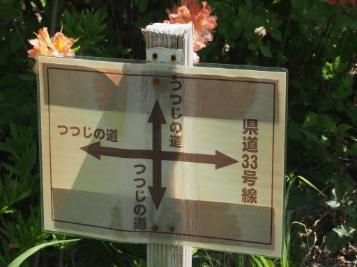 20160529・群馬ツツジ旅ネオン17・榛名湖