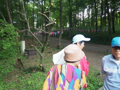 20160605・智光山公園1-05