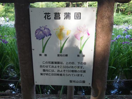 20160605・智光山公園1-14
