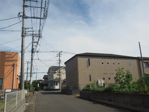 20160710・狭山湖散歩02
