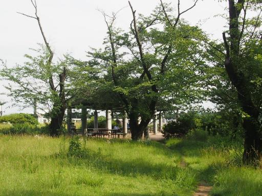 20160710・狭山湖散歩13
