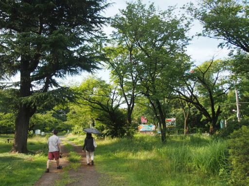 20160710・狭山湖散歩24