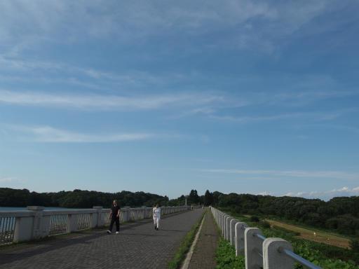 20160710・狭山湖散歩23