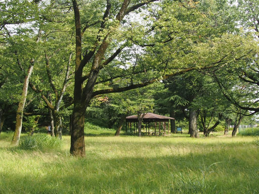 20160710・狭山湖散歩空12