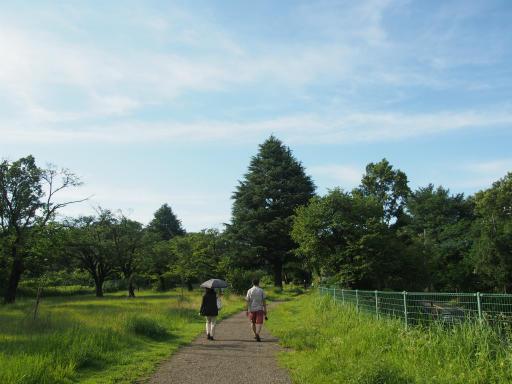 20160710・狭山湖散歩空24