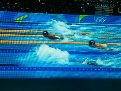 20160807・競泳1