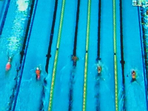 20160812・競泳