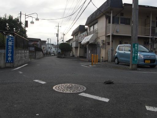 20160813・カメさん散歩09・空1