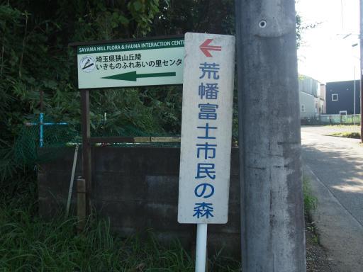 20161002・荒幡富士から狭山湖空1-04