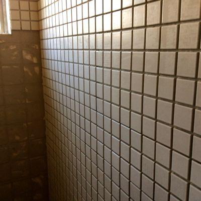 160720-トイレ2